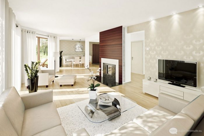 modern living room interior design_1003.jpg